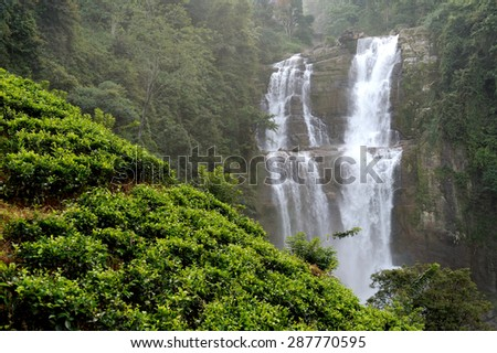 Beautiful Ramboda waterfall in Sri Lanka island - stock photo
