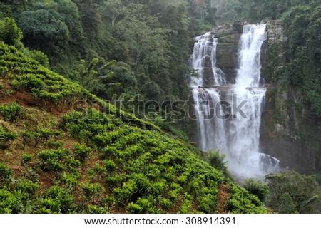 Beautiful Ramboda waterfall in Sri Lanka island - stock photo