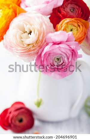 beautiful ranunculus flowers in vase  - stock photo