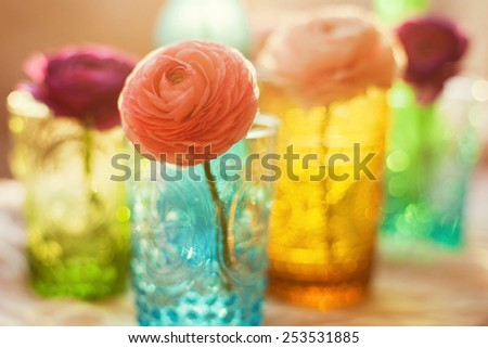 beautiful ranunculus in the bottles - stock photo
