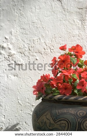 beautiful red flowers in clay pot - stock photo