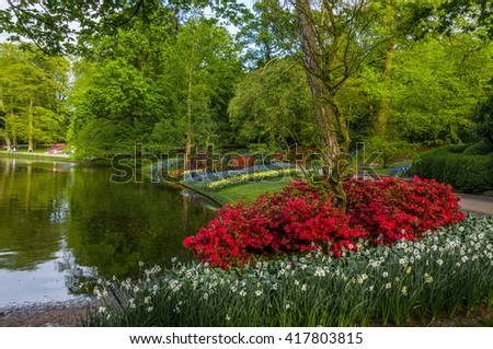Beautiful red flowers near the lake, Keukenhof Park, Lisse in Holland.