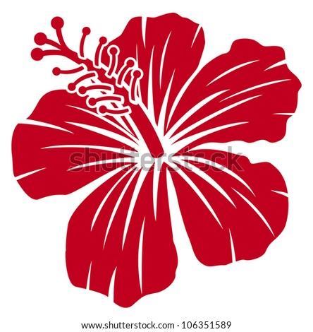 Beautiful red hibiscus flower - stock photo
