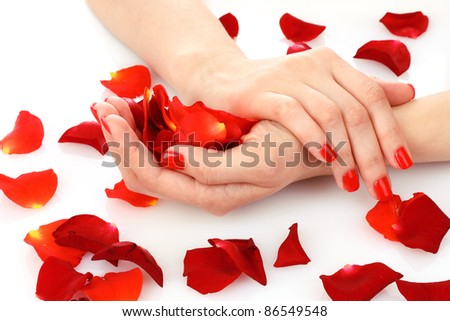 beautiful red manicure and  flower on white  background
