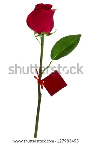 Beautiful red rose and greeting card isolated on - stock photo
