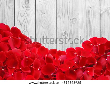 beautiful red rose petals on white wooden background - stock photo