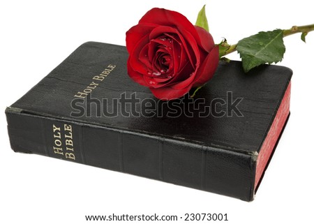 Beautiful red rose resting on the cover of an old bible, isolated on white - stock photo