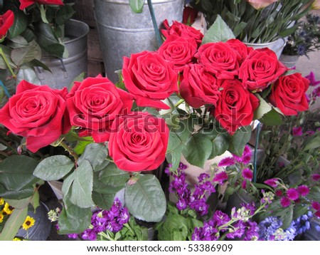 Beautiful red roses bouquet - stock photo