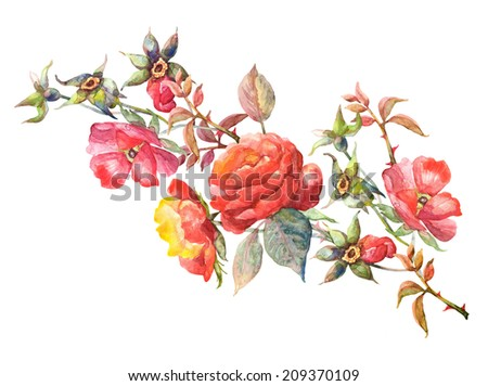 Beautiful Red Roses twig Garland. Watercolor hand painted illustration - stock photo