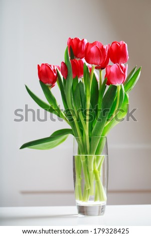 Beautiful red tulips in vase over white wall - stock photo