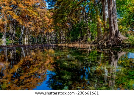 Beautiful Reflections of Fall Foliage Surrounding the Clear Frio River, Texas. - stock photo