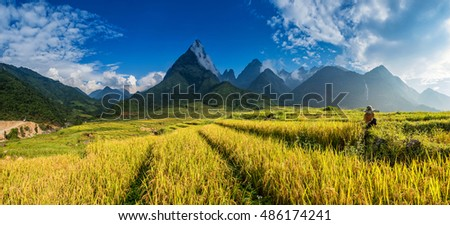 Beautiful Rice field landscape, The summit of Fan Si Pan or Phan Xi Pang mountain the highest mountain in Indochina at SAPA , Lao Cai, Vietnam