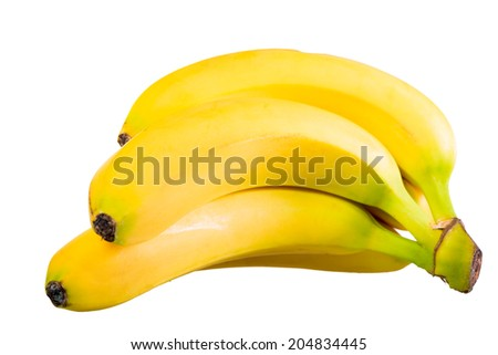 beautiful ripe bananas on a branch on a white background