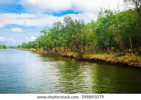 Beautiful river with thickets of green trees on the shore. The forest along the riverbank. Ropotamo river in Bulgaria. - stock photo