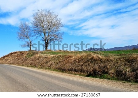 beautiful road side landscape picture with trees against the cloudy sky background