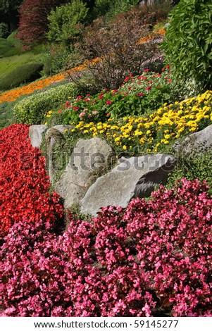 Beautiful rock garden in full bloom. - stock photo