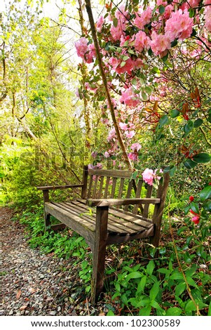Beautiful romantic garden with wooden bench and azalea trees - stock photo