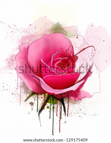 beautiful rose, watercolor - stock photo