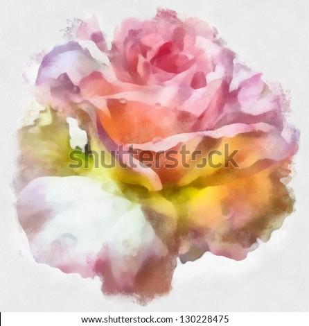 beautiful rose, watercolor - stock photo