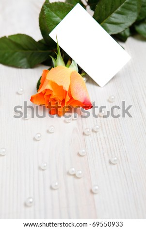 Beautiful rose with pearls as a gift for Valentine's day with copy-space card.
