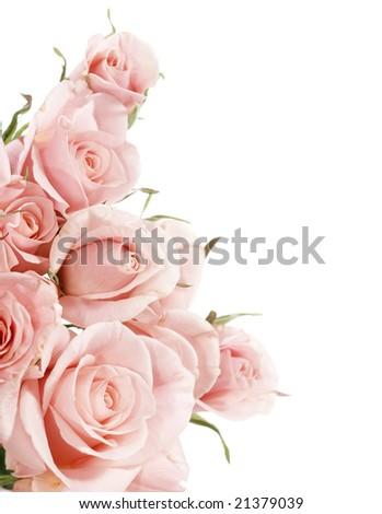 Beautiful Roses Border - stock photo