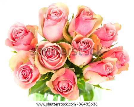 beautiful roses bouquet on white background - stock photo