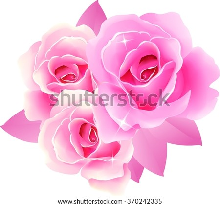 Beautiful roses design greeting cards gift stock illustration beautiful roses for design of greeting cards and gift packages for valentines day birthday negle Choice Image