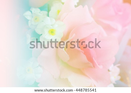 Beautiful roses in soft and blur style for background