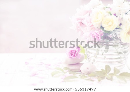 Beautiful roses on soft background.