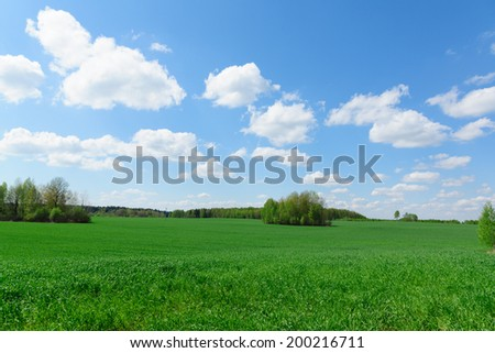 beautiful rural landscape with green vegetation and the bright sky - stock photo