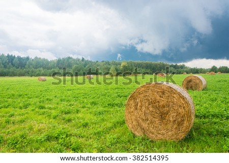 Beautiful rural landscape with round hay haystacks on the bright green grass.