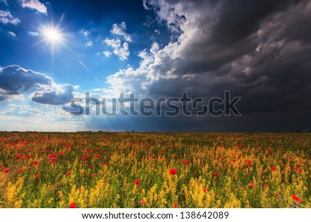 Beautiful rural scenery with wild flowers and ominous stormy sky - stock photo