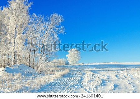 beautiful rural winter landscape a with the blue sky, a field and the forest - stock photo