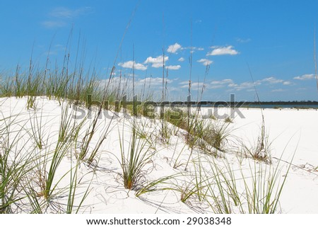 Beautiful sand dune in Florida panhandle - stock photo