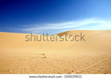 Beautiful sand dunes in the Sahara desert, Tunisia - stock photo