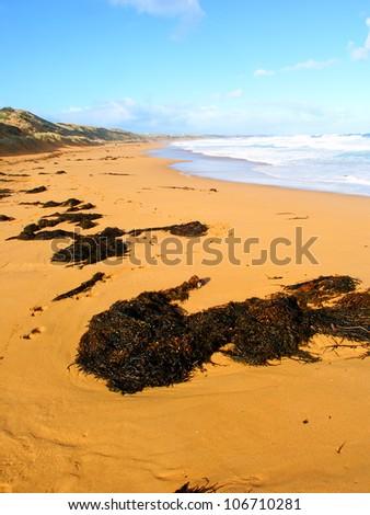 Beautiful sandy beach along the Great Ocean Road of southern Australia - stock photo
