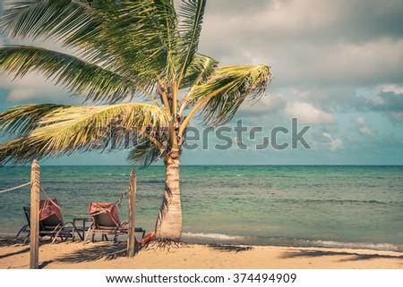 Beautiful sandy beach in Dominican Republic - stock photo