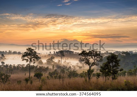 beautiful scenary in the central part of Thailand over the valley of mountain at sun rising giving a beautiful color on the mist in the field - stock photo