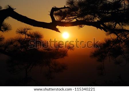 Beautiful scene in Thailand - stock photo
