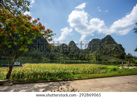 Beautiful scenery in the entrance Phong Nha Cave, Quang Binh, Viet Nam