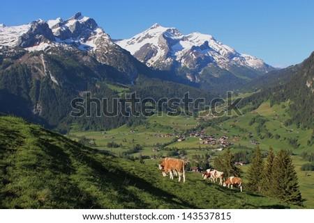Beautiful scenery near Gstaad, Bernese Oberland - stock photo