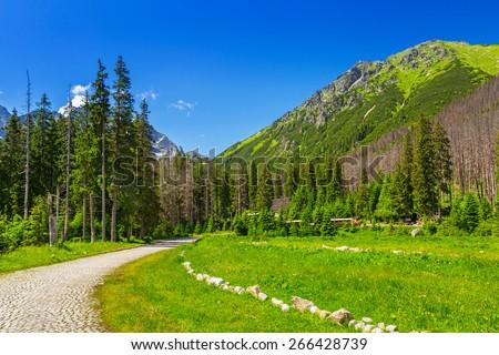 Beautiful scenery of the trail in Tatra mountains, Poland - stock photo