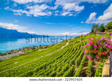 Beautiful scenery with rows of vineyard terraces in famous Lavaux wine region, UNESCO World Heritage Site since 2007, overlooking the northern shores of Lake Geneva, Canton of Vaud, Switzerland - stock photo
