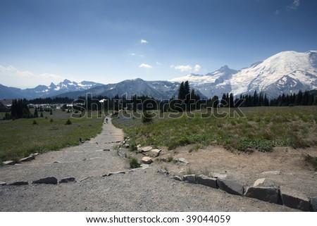 Beautiful Scenic Mount Rainier outside of Seattle Washington Snow Covered Mountain Wildflowers - stock photo