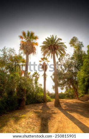 beautiful scenic parks in Barcelona. solar Catalonia - stock photo