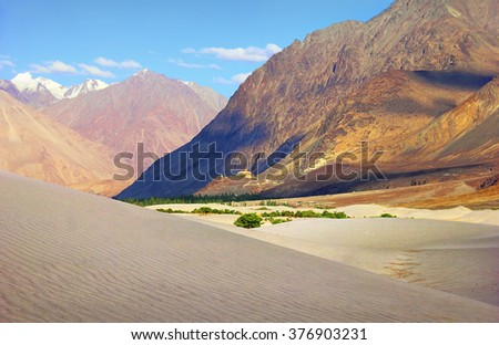 Beautiful scenic view of Nubra (Flower) valley desert - sand dunes against the background of distant colorful mountain range and cloudy blue sky, Ladakh, Himalaya, Jammu & Kashmir, Northern India - stock photo