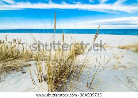Beautiful sea landscape. Sandy beach and sand dune with grass, Leba, Baltic Sea, Poland - stock photo