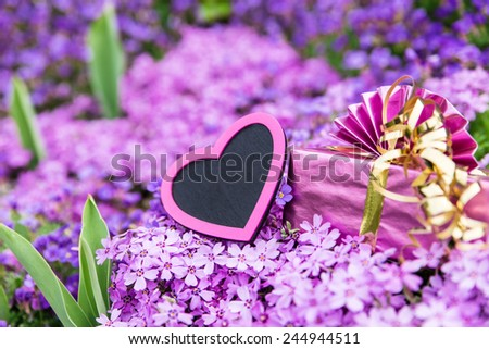 beautiful sea of violett flowers with a pink heart and a gift - stock photo