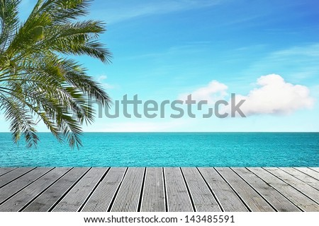 Beautiful sea view with palm tree on sunny day - stock photo