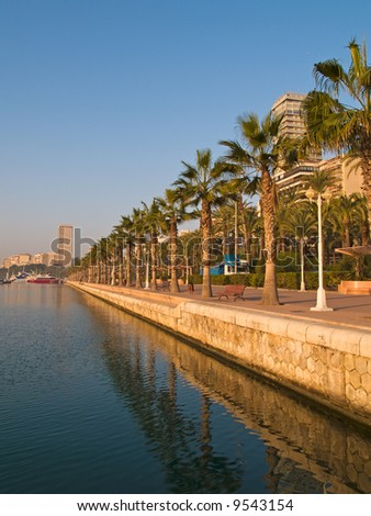 Beautiful seafront with palm trees in Alicante, Spain